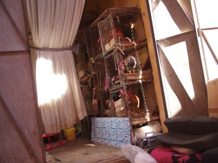 111130_133124-marokko
