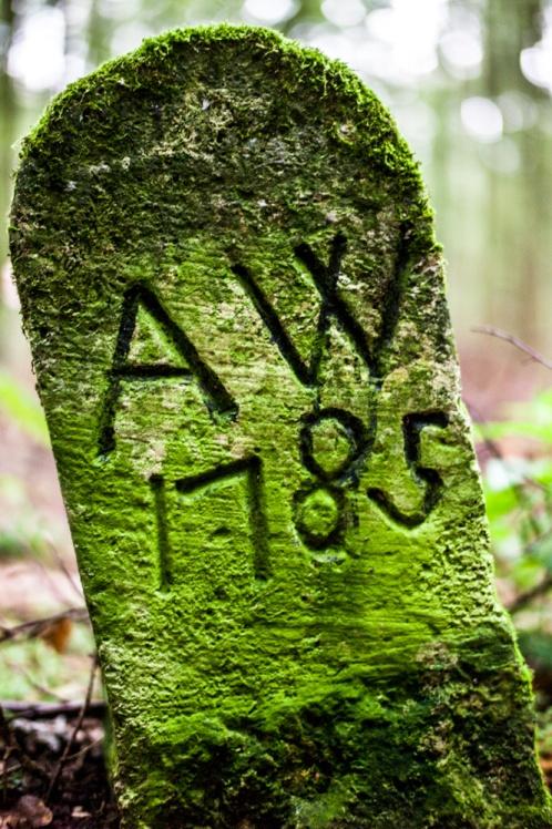 140926_173421_Wanderung_Leinetal