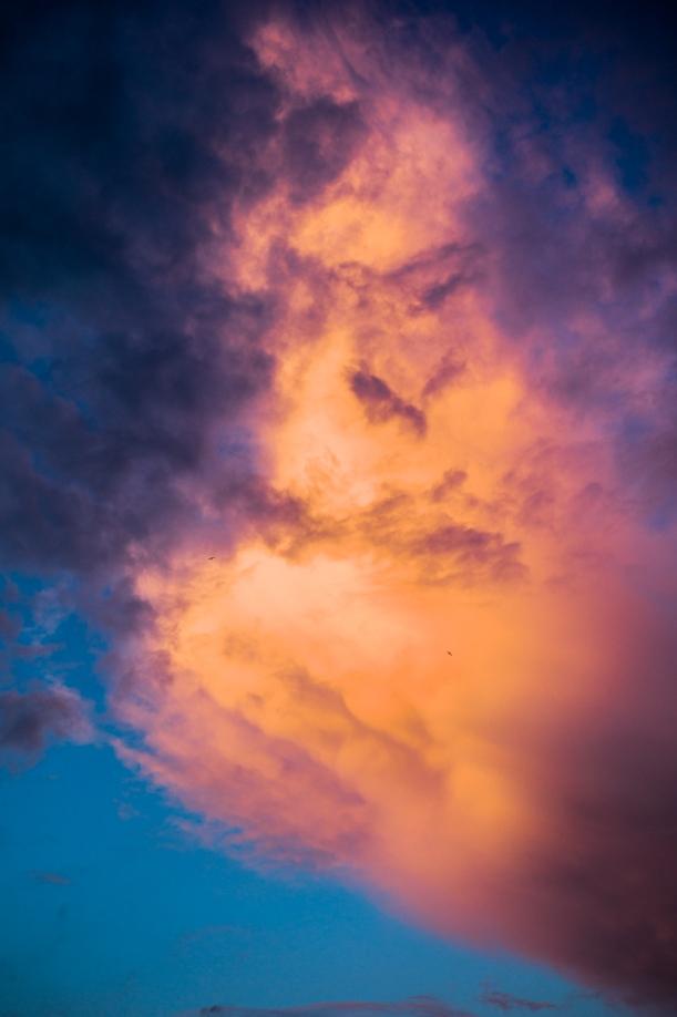 Birds before Fire-Cloud
