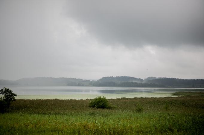 Allgäu Mood with Rain (Bavaria)