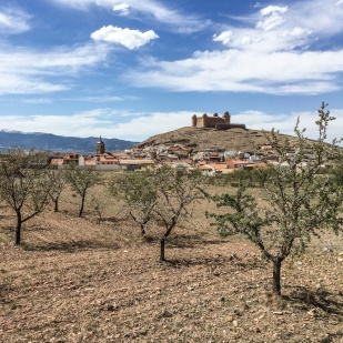 160330_155016_Andalusien