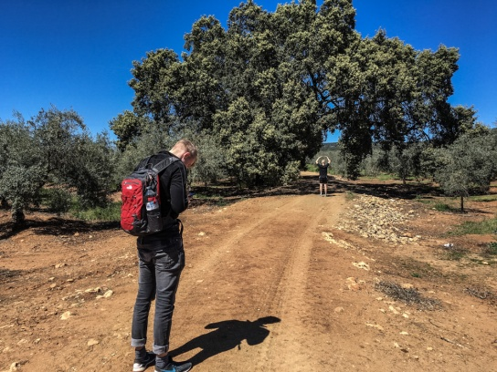 160401_150953_Andalusien