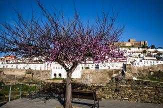 180331_103140_Porto_Faro